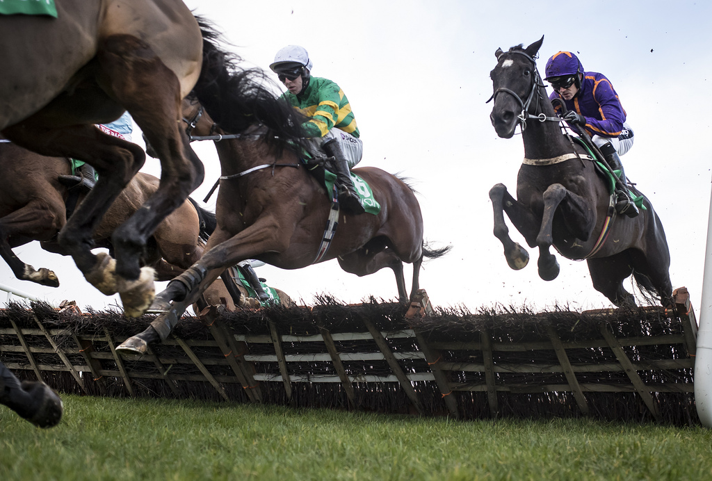 Easy Game and Ruby Walsh jumps the last with stable mate Getareason when winning the Navan Novice Hurdle (Grade 2)