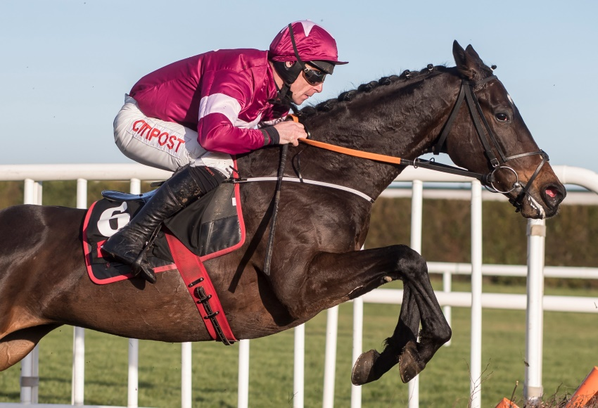Apples Jade Leopardstown