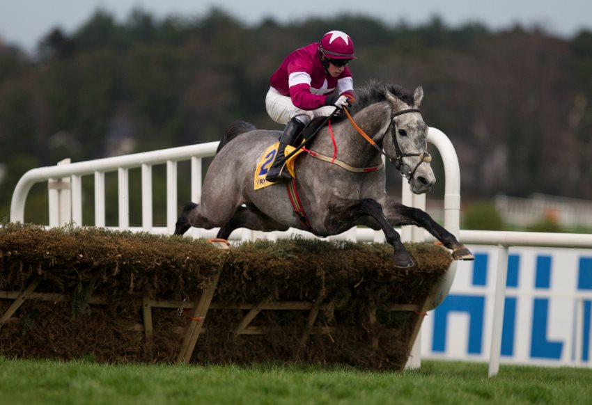 Petit Mouchoir and Bryan Cooper wins the Ryanair Hurdle  Leopardstown