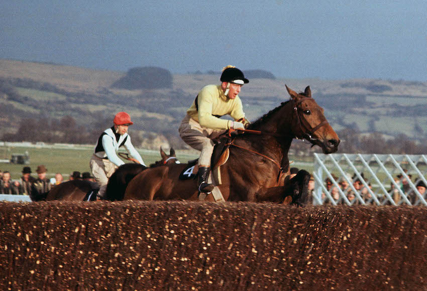 The peerless Arkle was a three-time Cheltenham Gold Cup in the 1960s